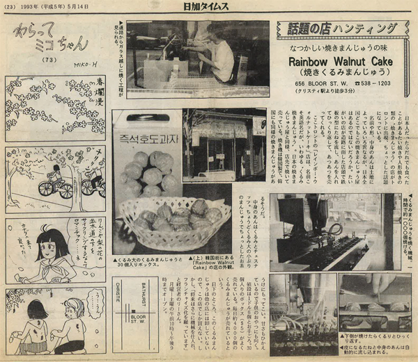 Japanese Newspaper (Japanese)